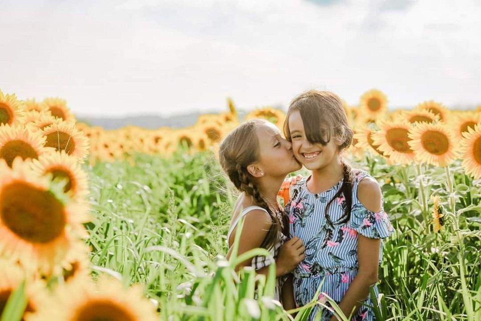 Gabriella and Mia MacDougall enjoying the sunflower maze