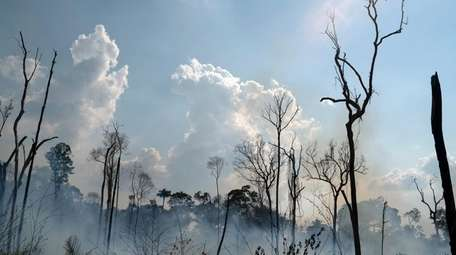 Fire consumes an area in the Alvorada da