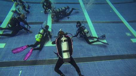Divers underwater during a Scuba Network of Long