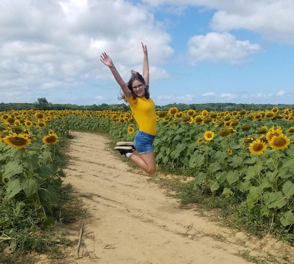 Sunflower Maze summer time fun.