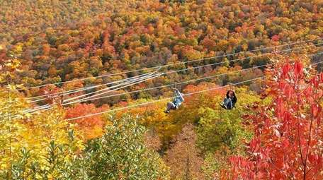 Two adventurers take in the fall foliage while