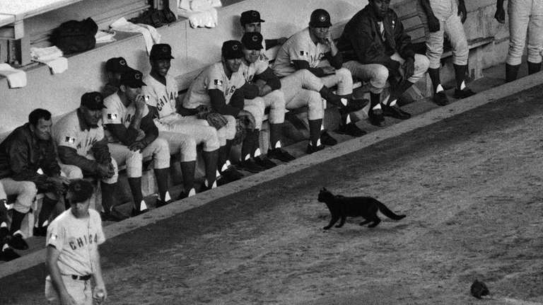50 years after the Black Cat Game, Mets need more luck vs