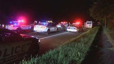 A dozen police cars surround a van following