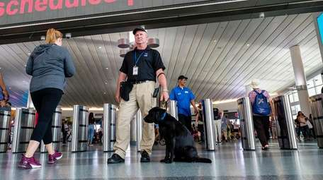 A bomb-sniffing dog screens passengers Sunday at the