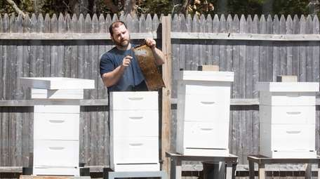 Nick Sarin of Manorville removes burr comb in