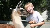 See llamas and kangaroos at The Animal Farm