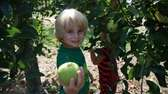 Choose your own fruits and veggies at Lewin