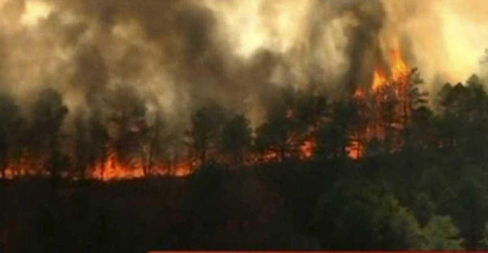 News12 screen grab of Manorville brush fire. (April