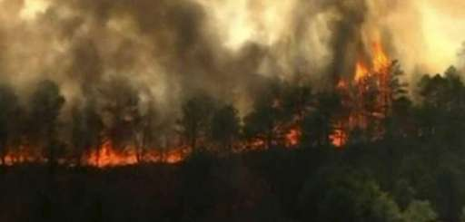 News12 screen grab of Manorville brush fire. (April