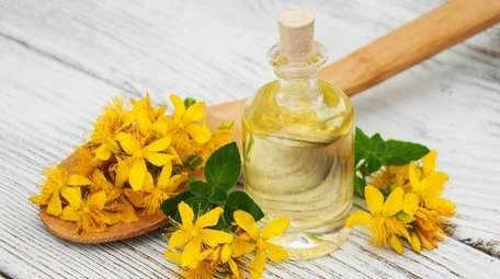 St.-John's-wort most commonly studied for mild to moderate