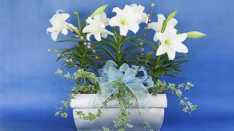You can recycle Easter lilies and other gift
