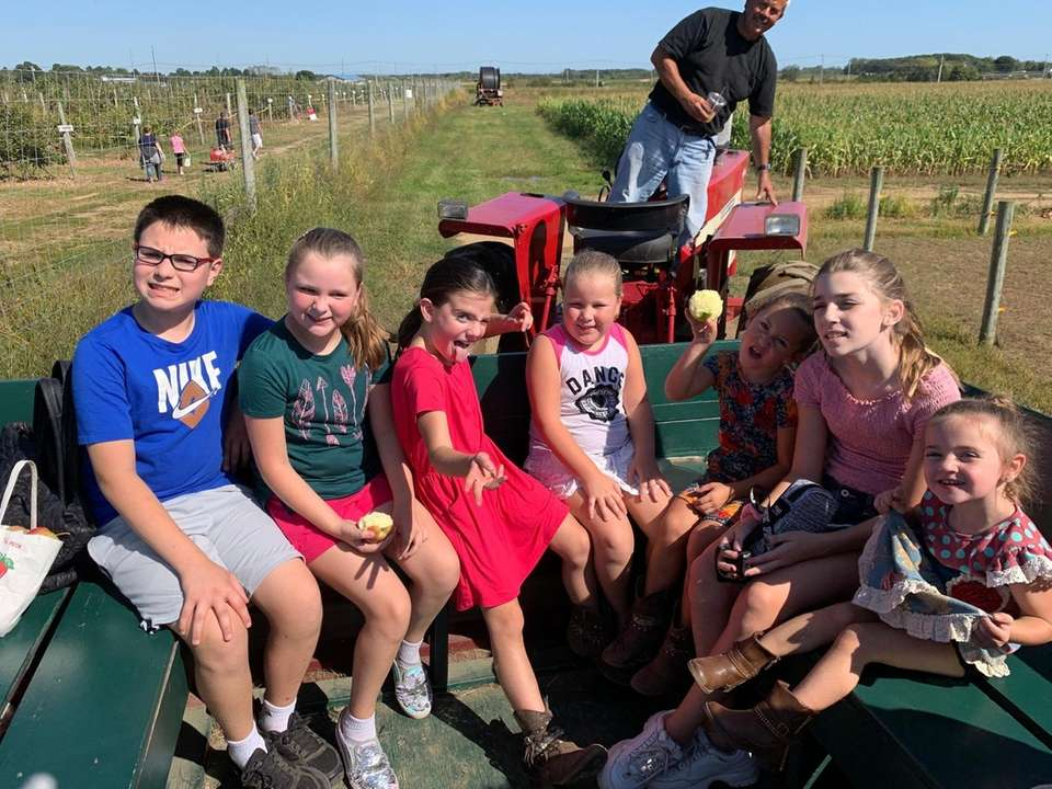 Apple picking at Windy Acres Farm in Calverton