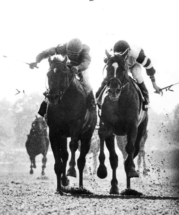 Alydar, left, and Affirmed battle in the Belmont