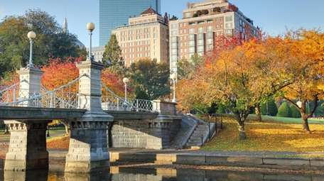 Colorful autumn foliage in the Boston Public Garden