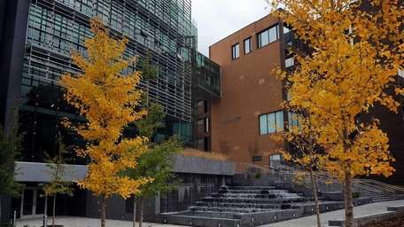 The Simons Center for Geometry and Physics at
