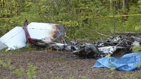 The charred debris of a private plane which