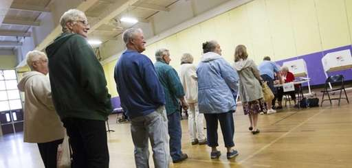 People stand in line to sign-in to vote