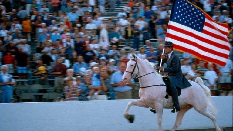 The Tennessee Walking Horse Celebration in Shelbyville, Tenn.