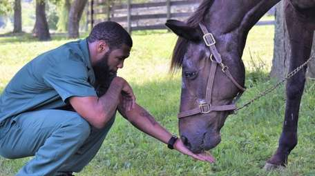The horse Quick Call at the Wallkill Correctional
