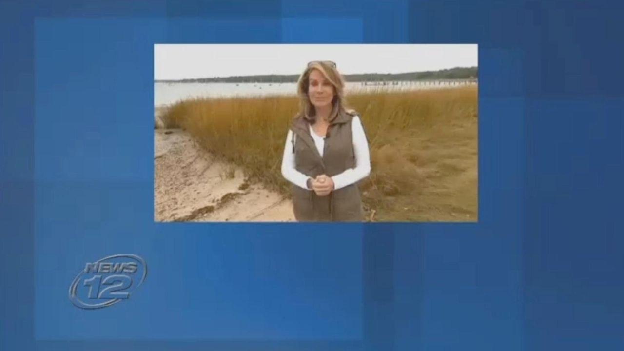 Carol Silva, the veteran News 12 anchor and