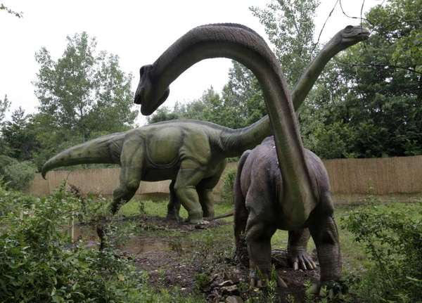 An apatosaurus display at Field Station, home to