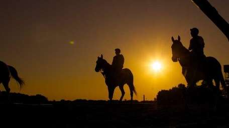 Horses enter the track at sunrise for their