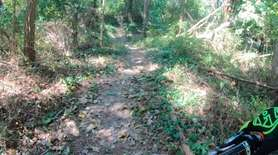 Two miles of biking and hiking trails recently
