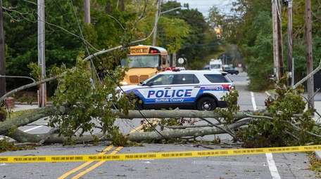 A tree and wires are down across Smithtown