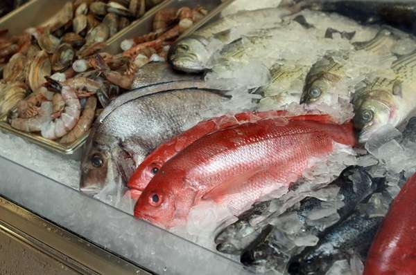 Fresh fish purchased daily at market. (June 14,