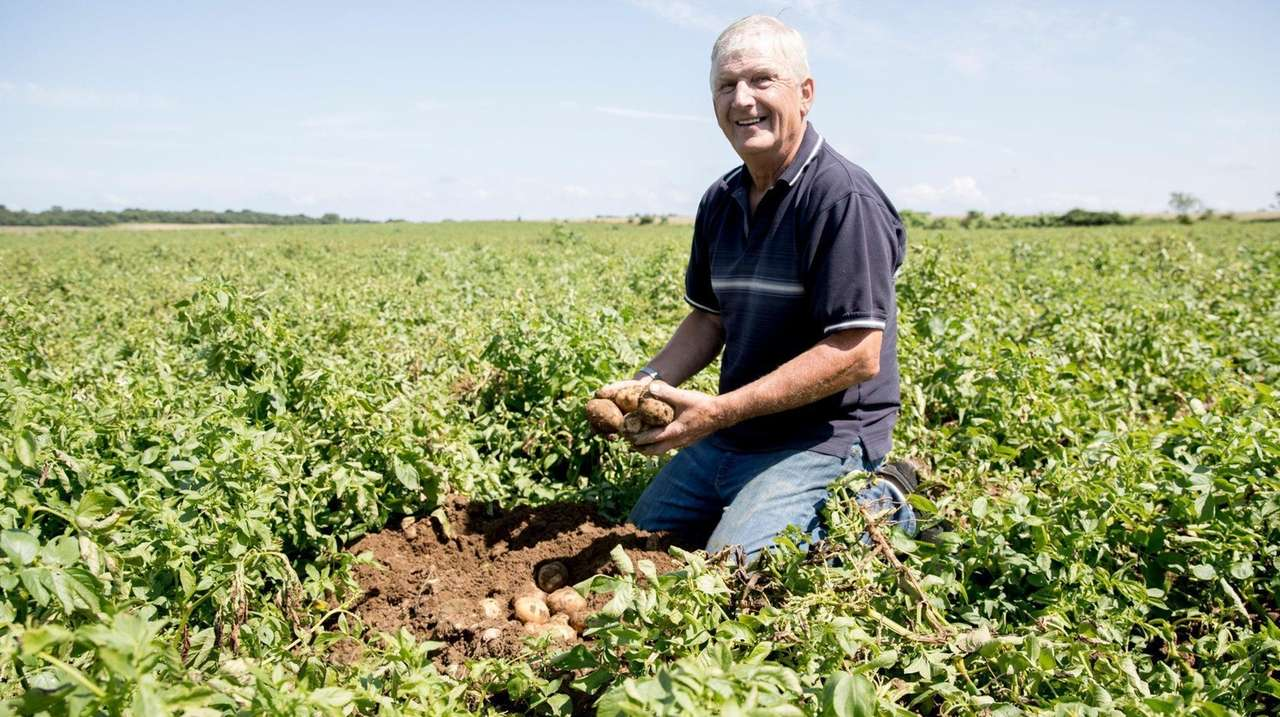 Third-generation potato farmer Martin Sidor, of Mattituck, is