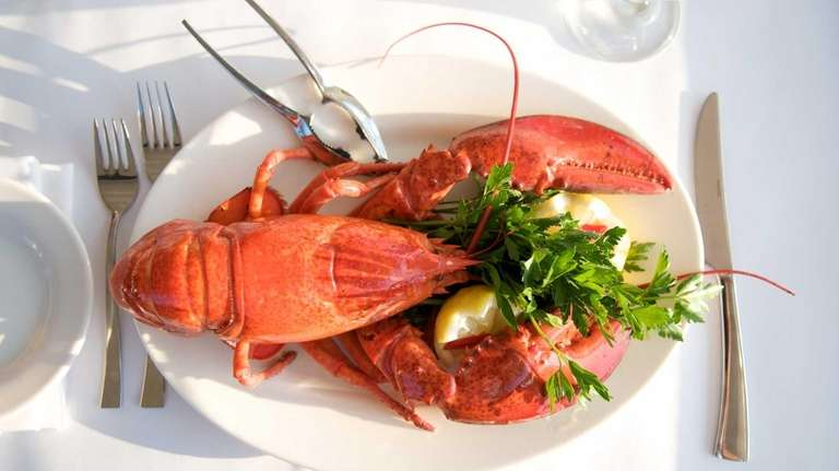 Andrra's lobster is served with a beurre blanc
