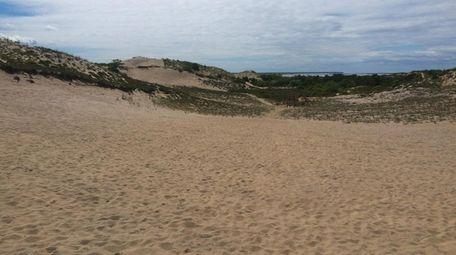 The Walking Dunes, Montauk.