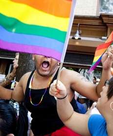 Revelers cheer during the New York City Gay