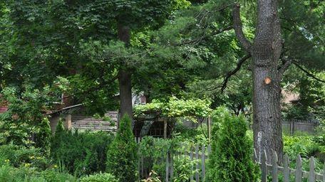 This New Paltz, N.Y., yard