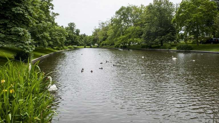 Town Pond in East Hampton is a small