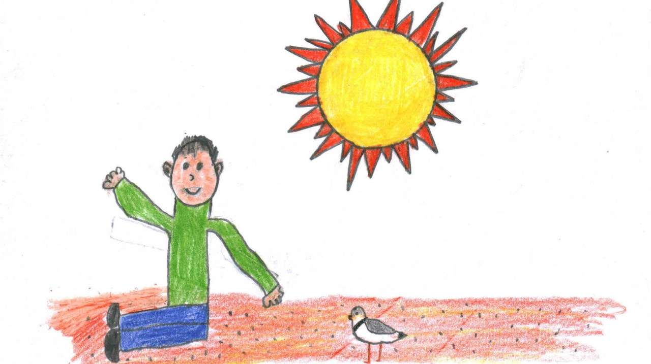 Endangered species: How to save the piping plover