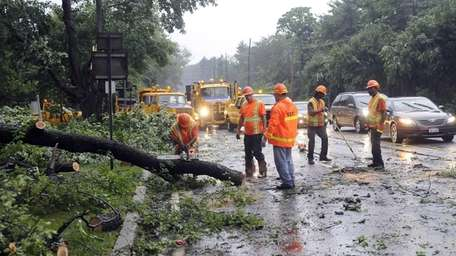 Department of Transportation workers clear fallen trees along