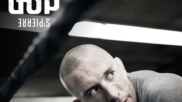 Georges St-Pierre was a technical advisor for the