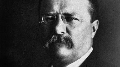 Theodore Roosevelt was vice president under President William