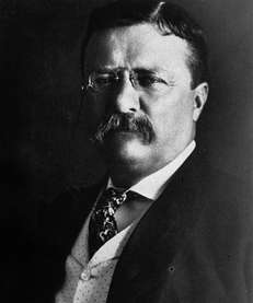 Theodore Roosevelt was vice president under President William