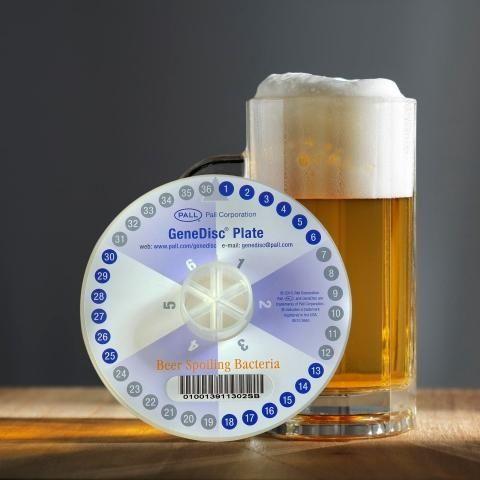 GeneDisc Plate for beer-spoilage bacteria.