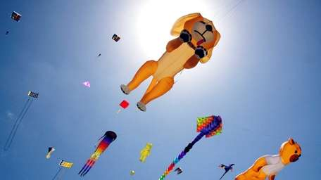 Kites of all types will be competing in