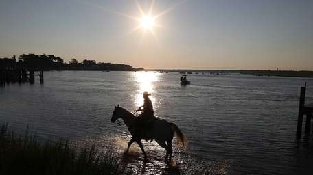 A salt-water cowboy waits for wild ponies to