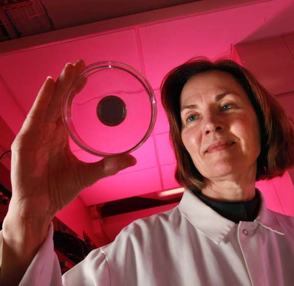 Esther Takeuchi holds a sample of electrode material