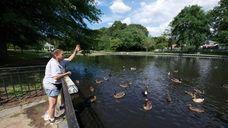 Lynda Bertone feeds the wildlife at Hall's Pond