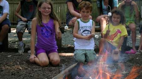 Pictured here are kids around a campfire at