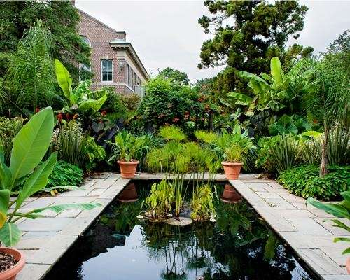 The tropical garden at Farmingdale State University.