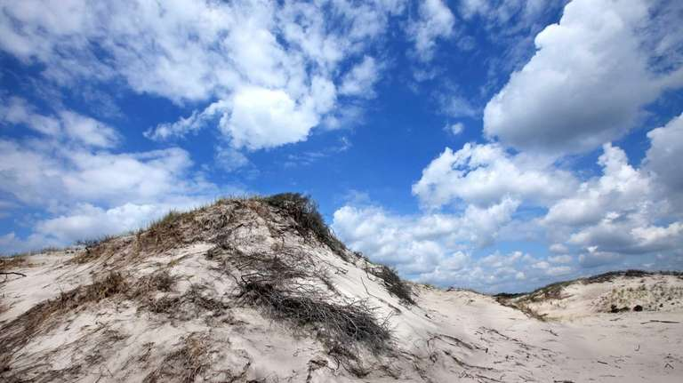 Sand dunes at the Otis Pike Fire Island