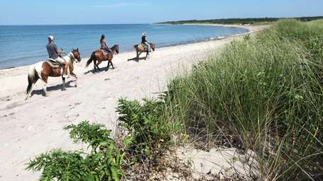 Horseback riders from nearby Deep Hollow Ranch make