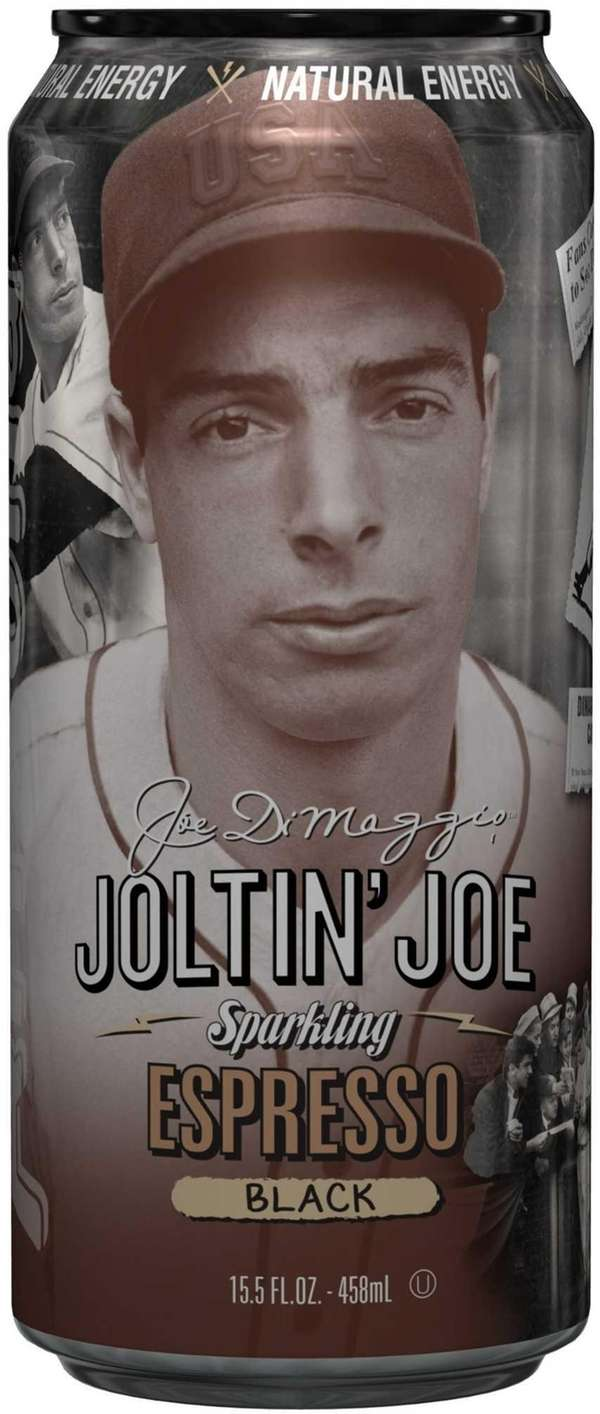 Joe DiMaggio:The Hero's Life Book Summary and Study Guide